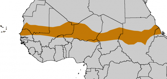 Sahel_Map_Africa_rough.png