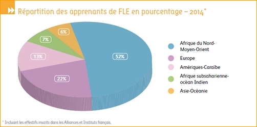 4repartition_pourcentage_FLE.jpg